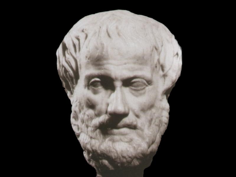 La Filosofia Aristotele La Logica L Etica E La Meraviglia